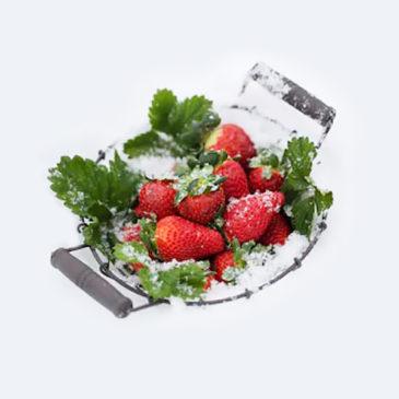 Depuis quand les fraises ne poussent-elles plus en décembre?